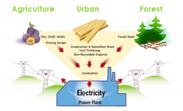 Omi renewable energy biomass energy for Chp form 362