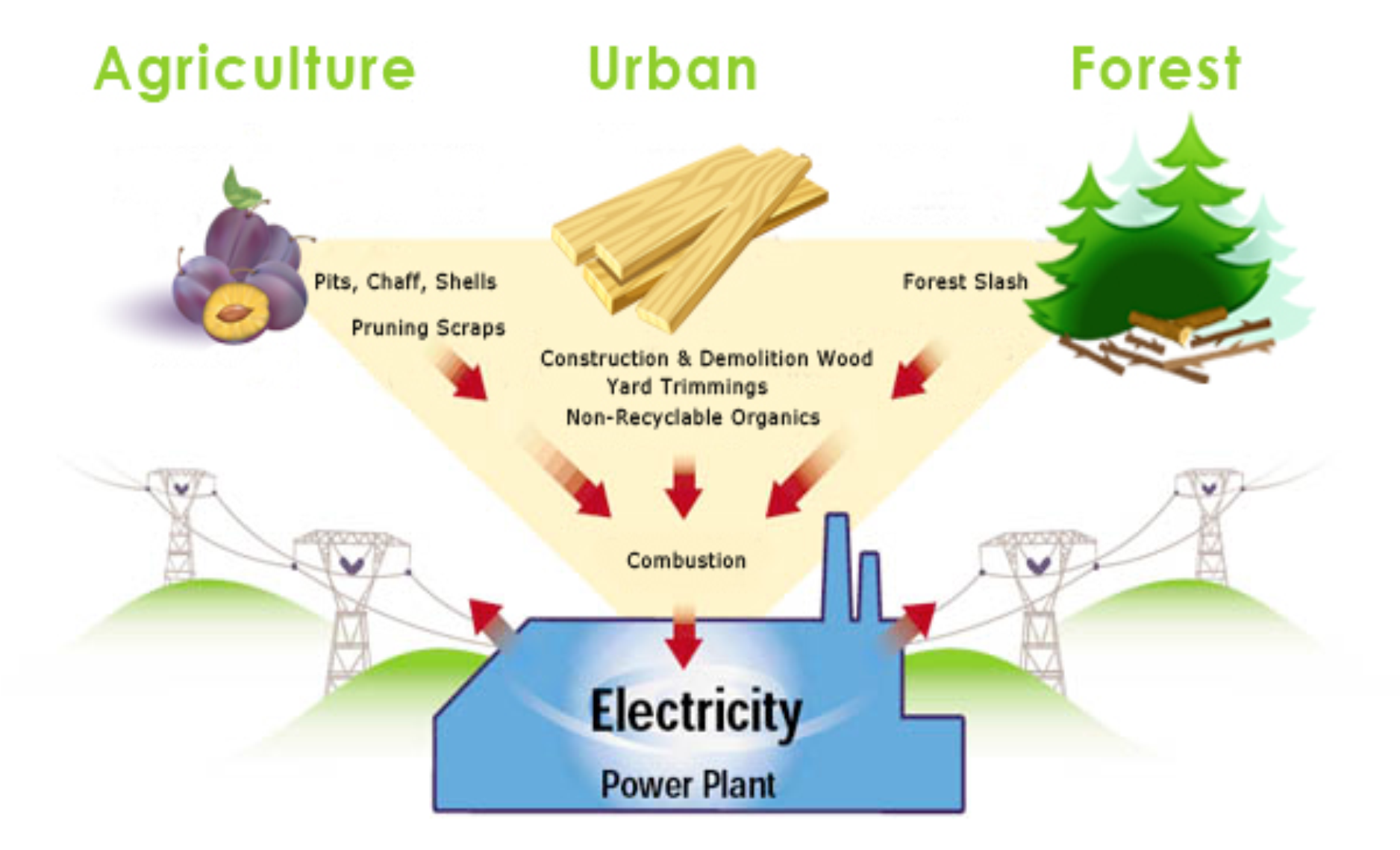 biomass as an alternative energy essay The alternative sources of energy essays nowadays,when a great progress of biomass is another major alternative energy sourceburning of wood and straw gives biomass energy which is already used largely for cooking and heating in developing countriesbut this way of gaining energy.